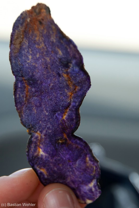 Violette Chips in Frankreich