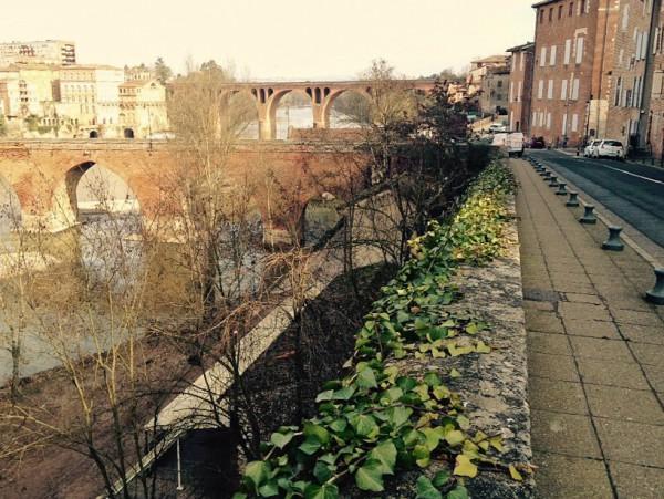 Am Flussufer in der Altstadt von Albi