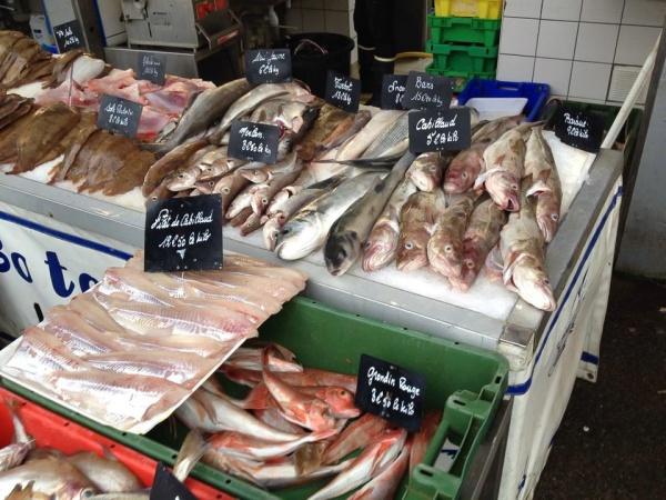 Fangfrischer Fisch aus dem Ärmelkanal